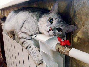 Отопление частного дома в Кирове